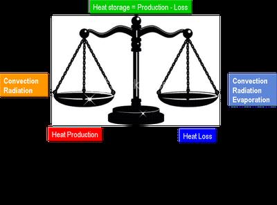 Heat_balance